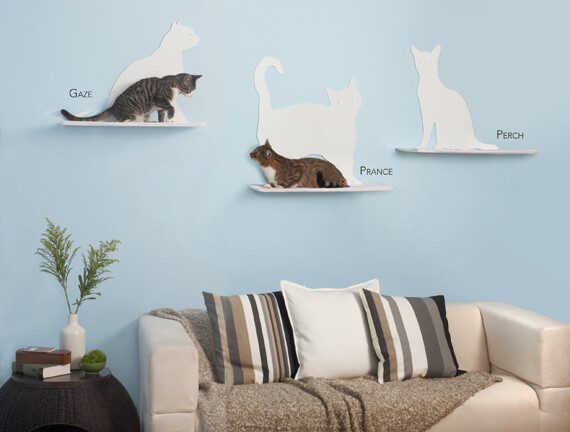 Modern Cat Furniture   Shelves