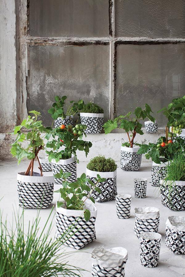 Flower pots can transform any garden or interior for Indoor garden design twitter