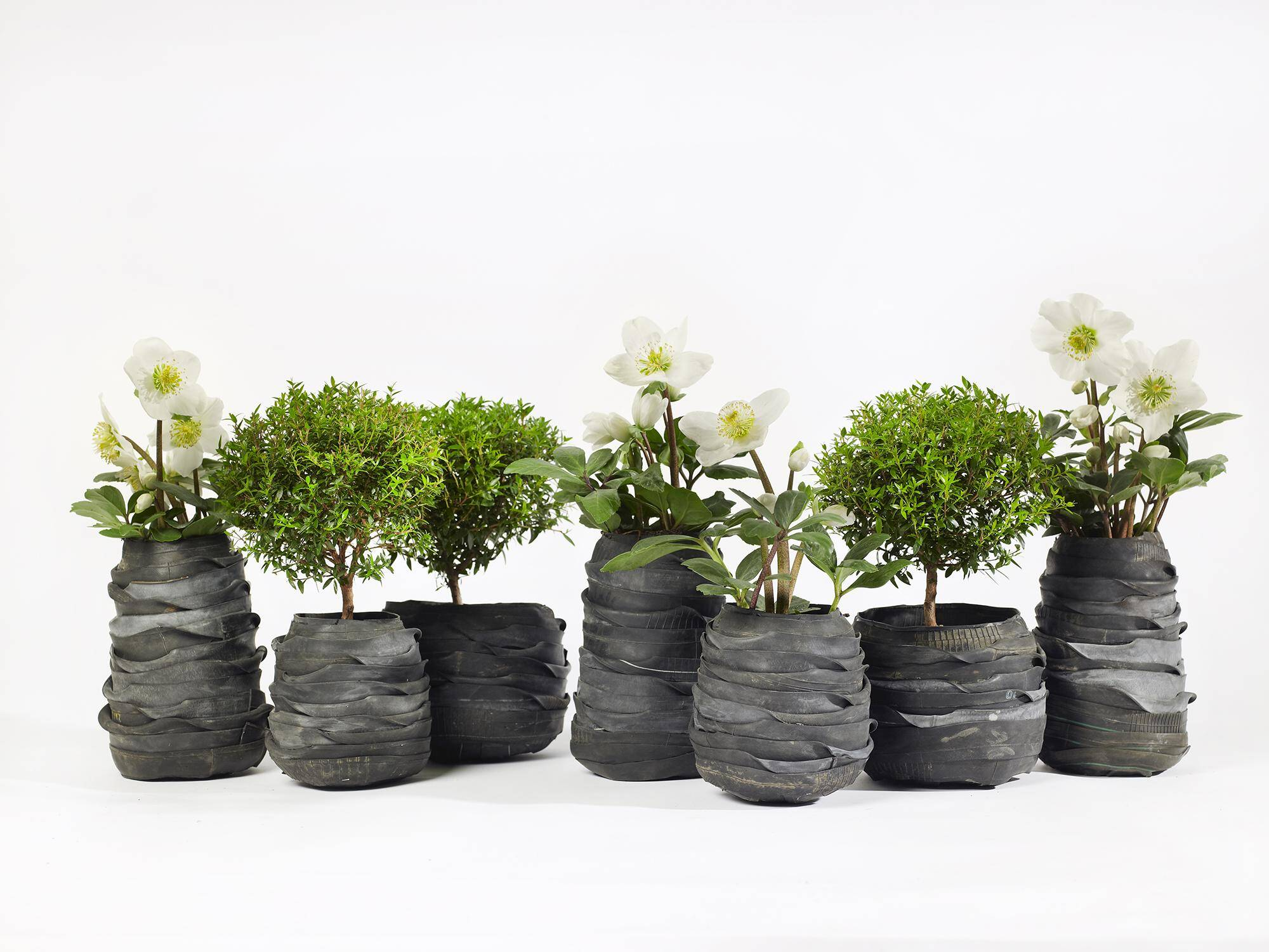Flower pots can transform any garden or interior for Flower pots design images