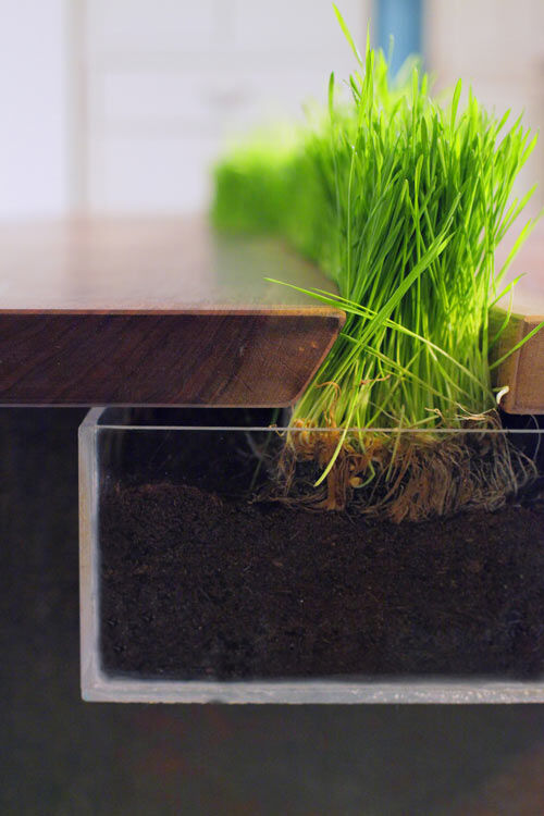 Planter Table - some freshness to your home, by Emily Wettstein