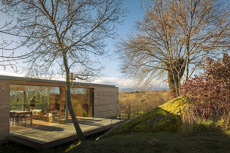 B House by ch+qs arquitectos inspired by the fields with yellow flowers - HomeWorldDesign (2)