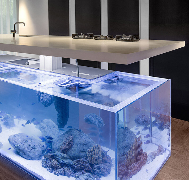 Kitchen with beautiful large aquarium for a base , Robert Kolenik