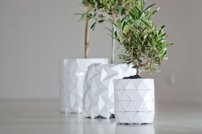 Growth - origami-pot that grows with the plant (4)