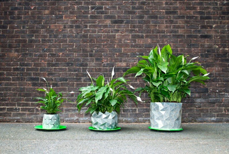 Growth - origami-pot that grows with the plant (6)