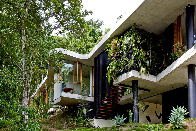 Tropical house nestled amongst treetops in Queensland (2)