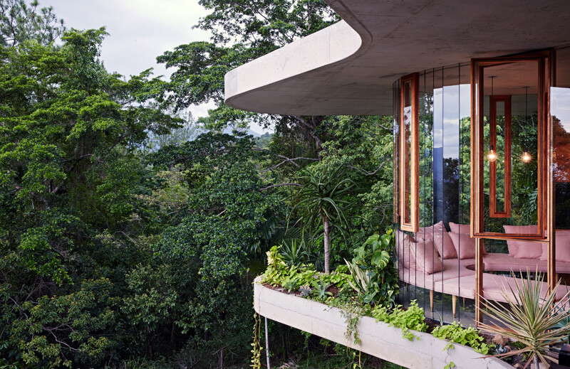 Tropical house nestled amongst treetops in Queensland (3)