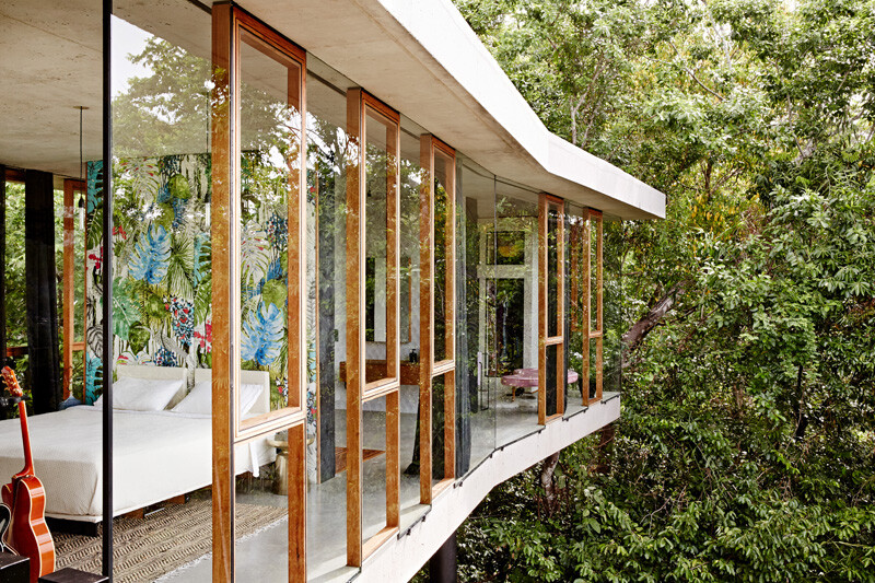 Tropical house nestled amongst treetops in Queensland (5)