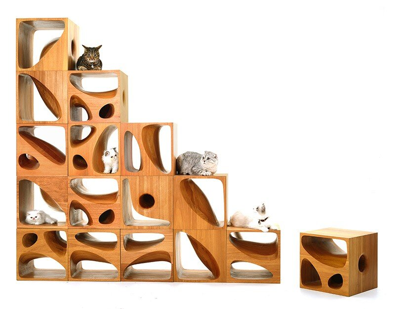 CATable wooden cubes designed for playful cats (5)