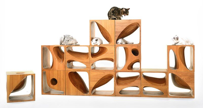 CATable wooden cubes designed for playful cats (6)