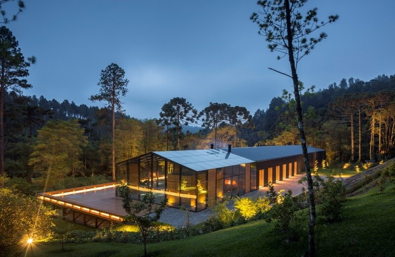 Metallic structure house in the midst of a beautiful forest of pine trees