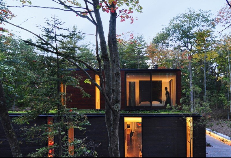 Sylvan Retreat textured wood structure with a green roof (3)