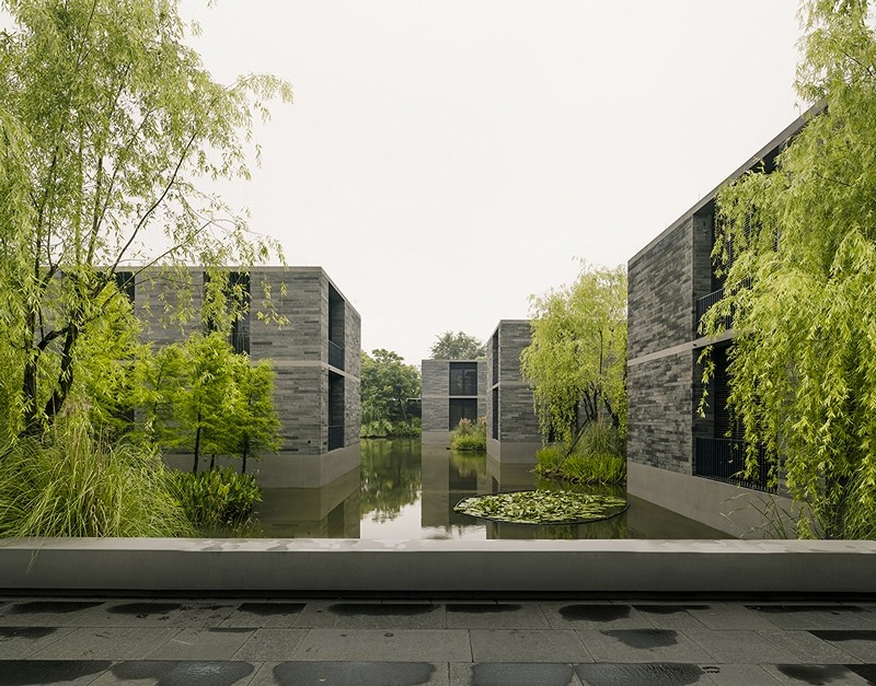 Apartment buildings surrounded by a water garden and wild for Apartment landscape design
