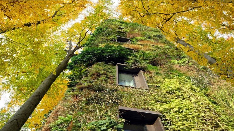 Sustainable Houses Designed as Trees by Oas1s (19)