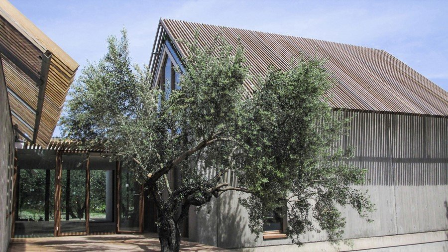 T - House Architecture Integrates Active and Passive Sustainable Solutions (13)