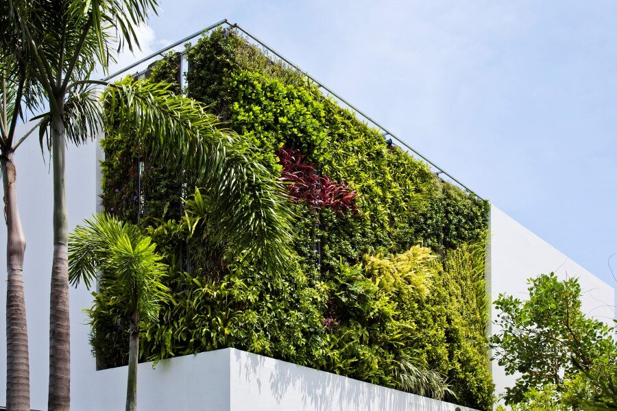 Thao Dien House delights us with a beautiful vertical garden walls (8)