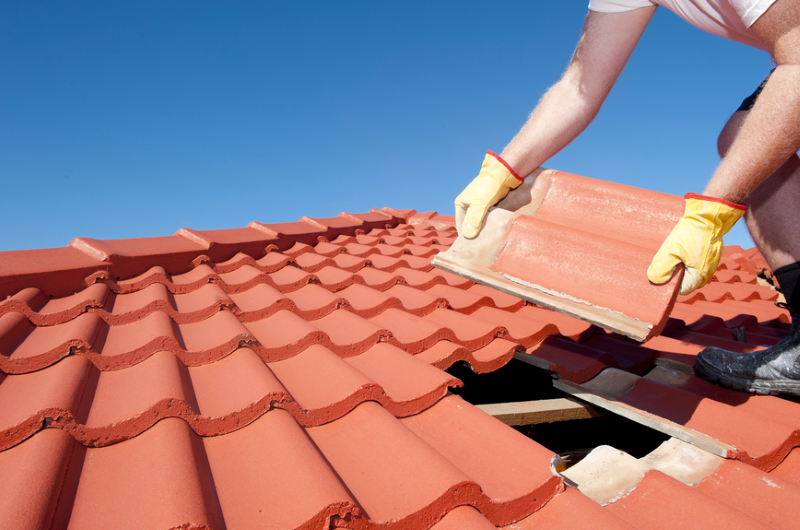 What You Should Know About Your Roof (1)