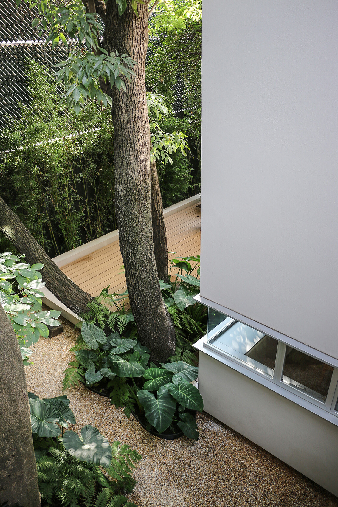 Small Eco-Friendly Home in Mexico City by Paul Cremoux Studio (6)