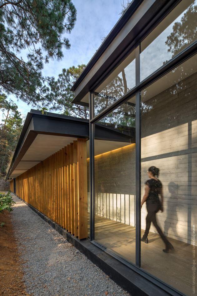 Family House Under the Trees - Irekua Anatani House (12)