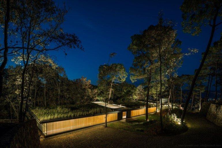 Family House Under the Trees - Irekua Anatani House (15)