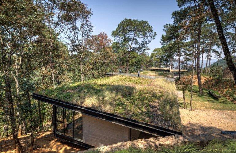 Family House Under the Trees - Irekua Anatani House (3)