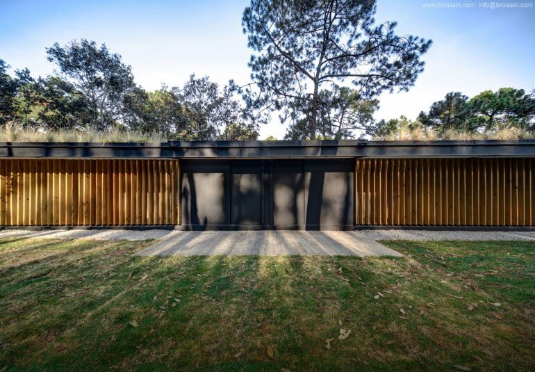 Family House Under the Trees - Irekua Anatani House (4)