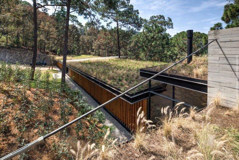 Family House Under the Trees - Irekua Anatani House (8)
