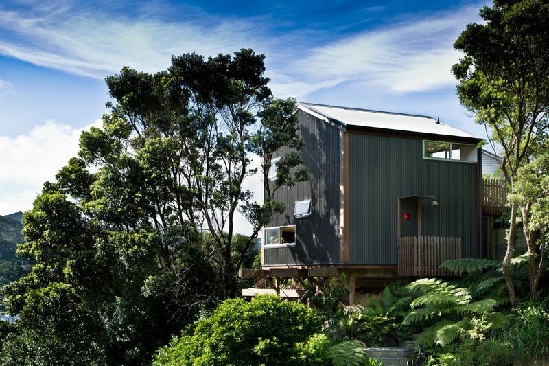 Island Bay House by WireDog Architecture (1)