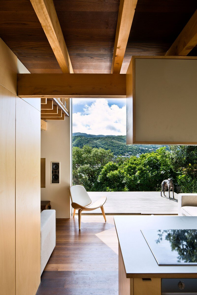 Island Bay House by WireDog Architecture (12)
