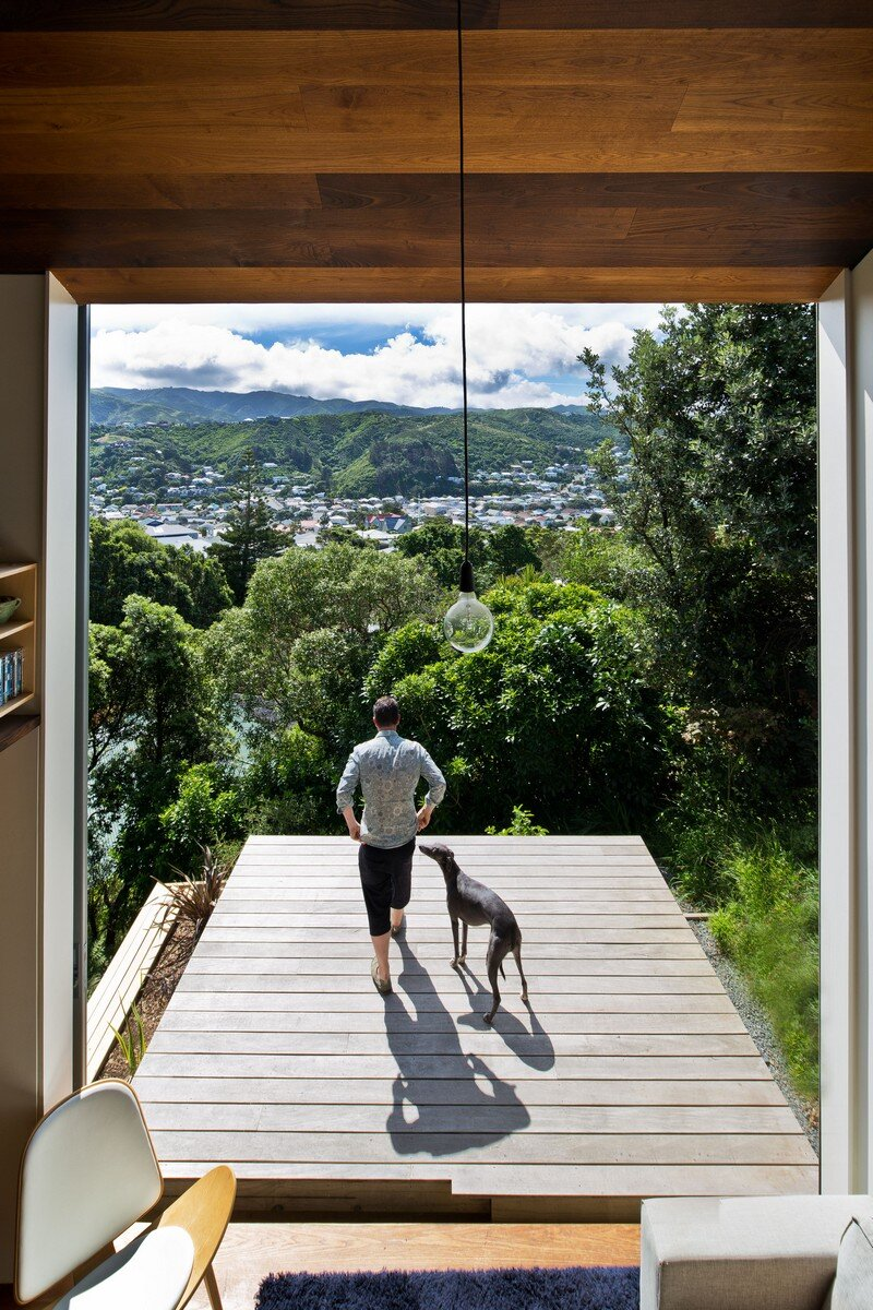 Island bay house by wiredog architecture for Architecture and design dog house