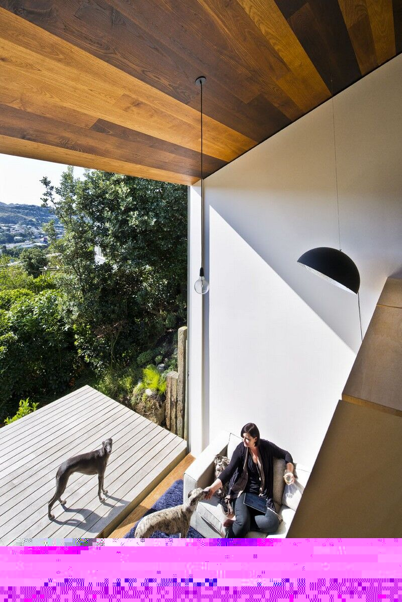 Island Bay House by WireDog Architecture (7)