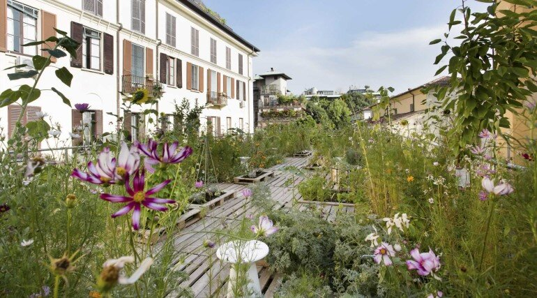 Piuarch Studio Has Converted its Rooftop into a Permanent Vegetable Garden (1)