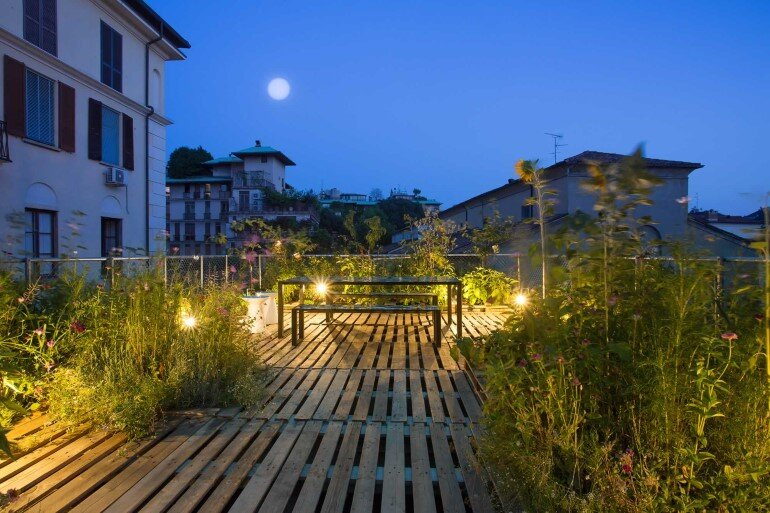 Piuarch Studio Has Converted its Rooftop into a Permanent Vegetable Garden (11)