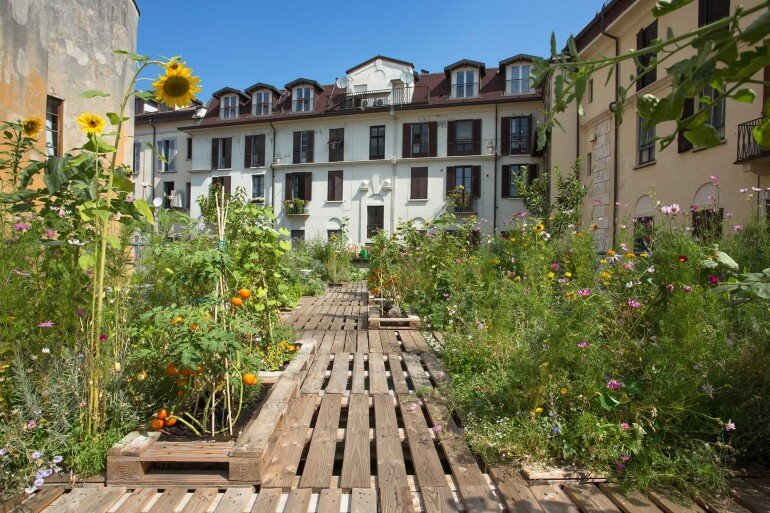 Piuarch Studio Has Converted its Rooftop into a Permanent Vegetable Garden