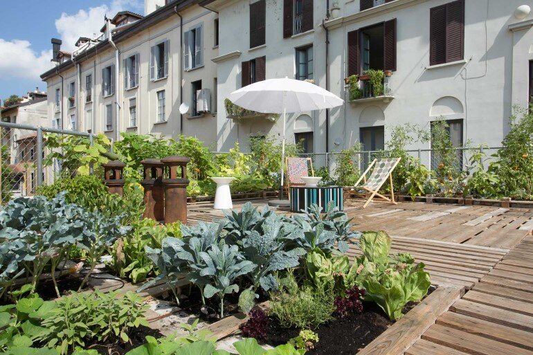 Piuarch Studio Has Converted its Rooftop into a Permanent Vegetable Garden (4)