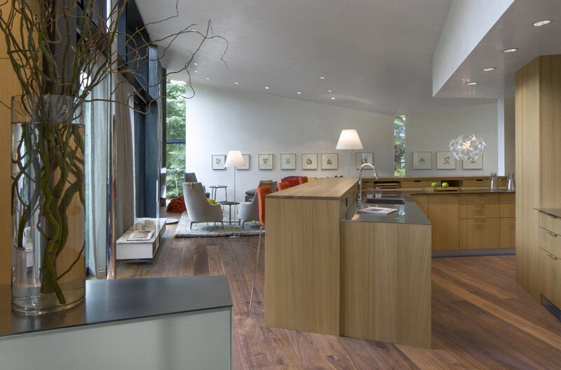 Blackbird House - Urban Mountain Retreat by Will Bruder Architects (11)
