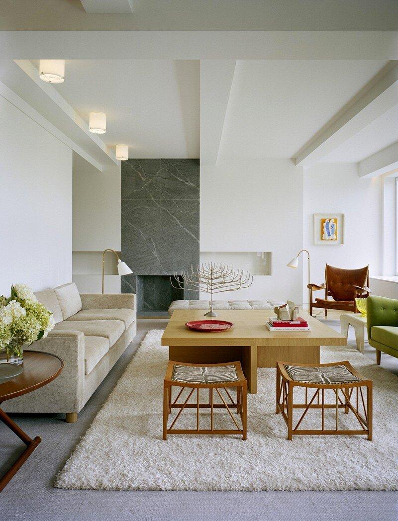 Central Park Open-Plan Residence 2