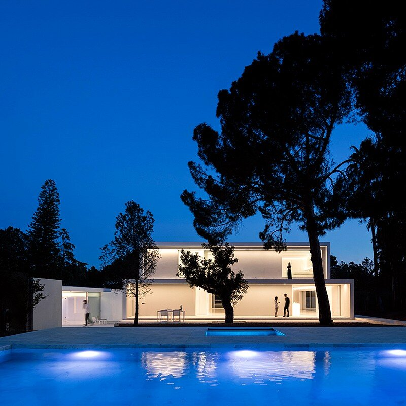 House Between the Pine Forest 20