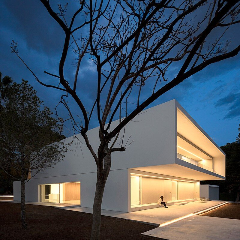 House Between the Pine Forest 4
