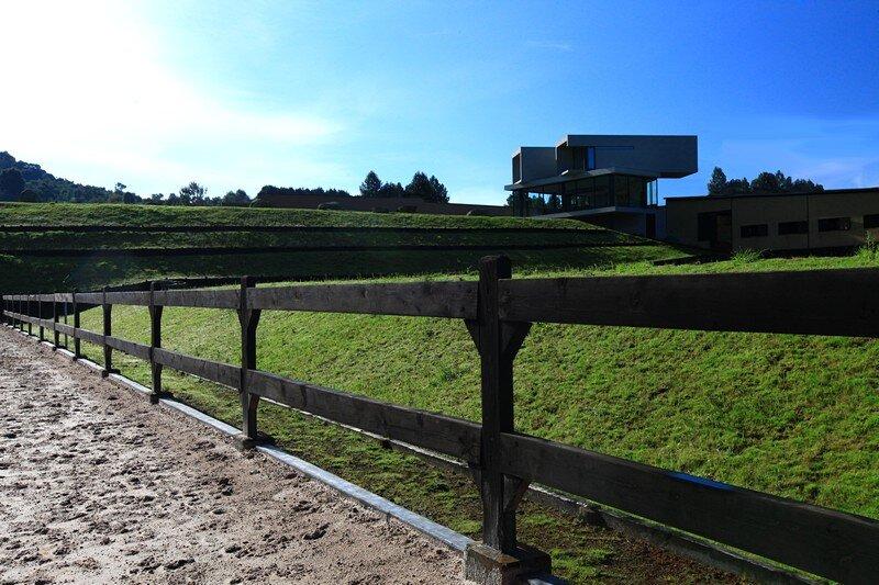 Rancho del Arbol 12