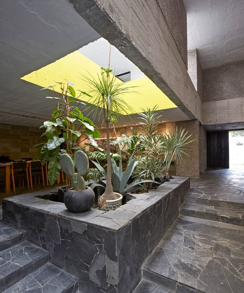 Mexico City Concrete Home 8