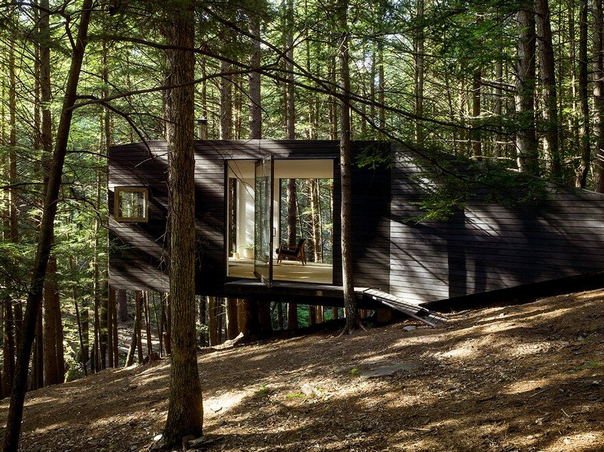 Tiny blackened timber cabin in a forest in upstate new york for Upstate new york cabin