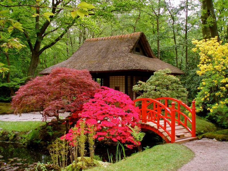 Japanese garden: Spiritual refuge designed for contemplation and inner peace