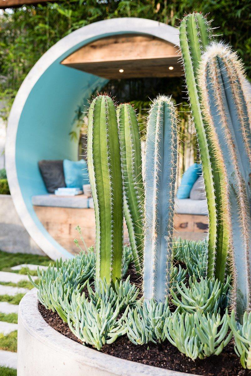 Alison Douglas Design - expressive use of concrete material (3)