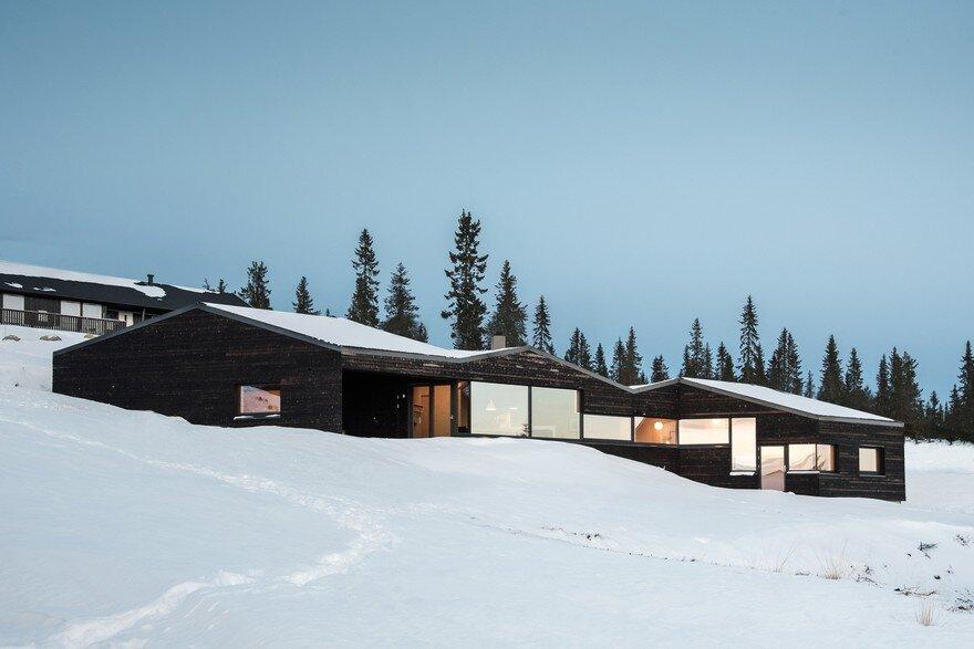 Dark Timber Cabin