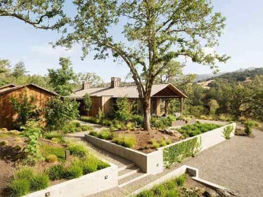 Blue Oaks Residence by Richard Beard Architects