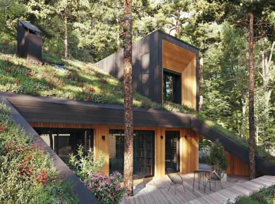Smart Passive House with Green Roof