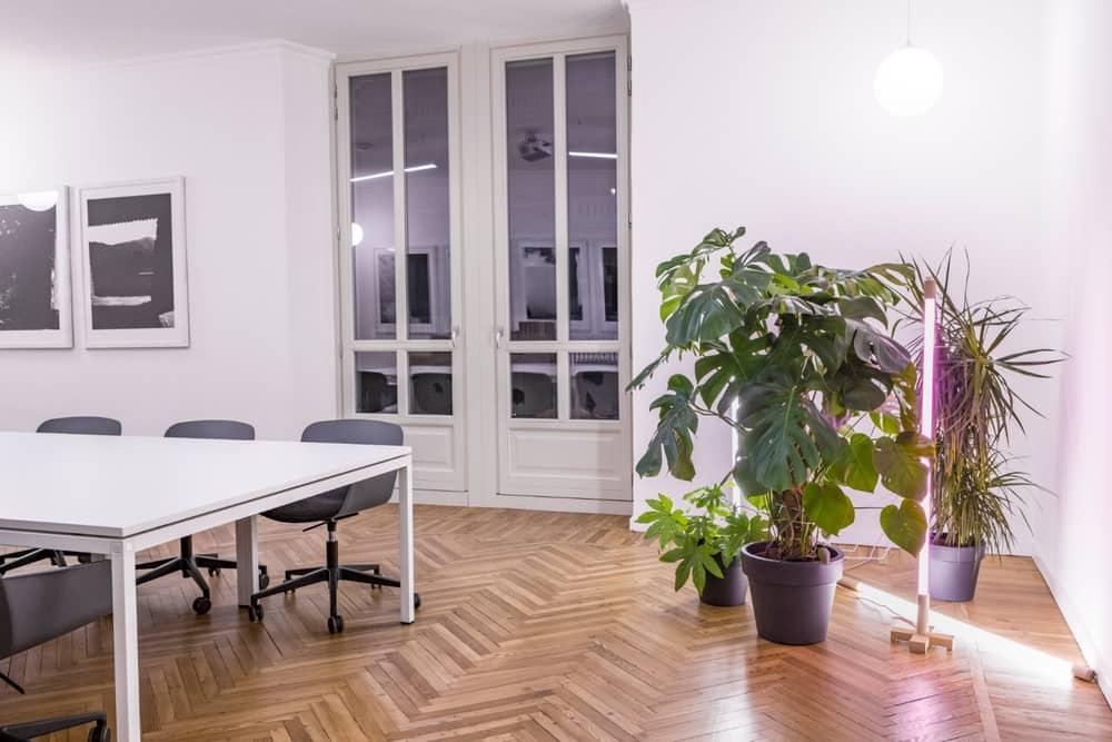 Office Refurbishment by Studio 3Mark